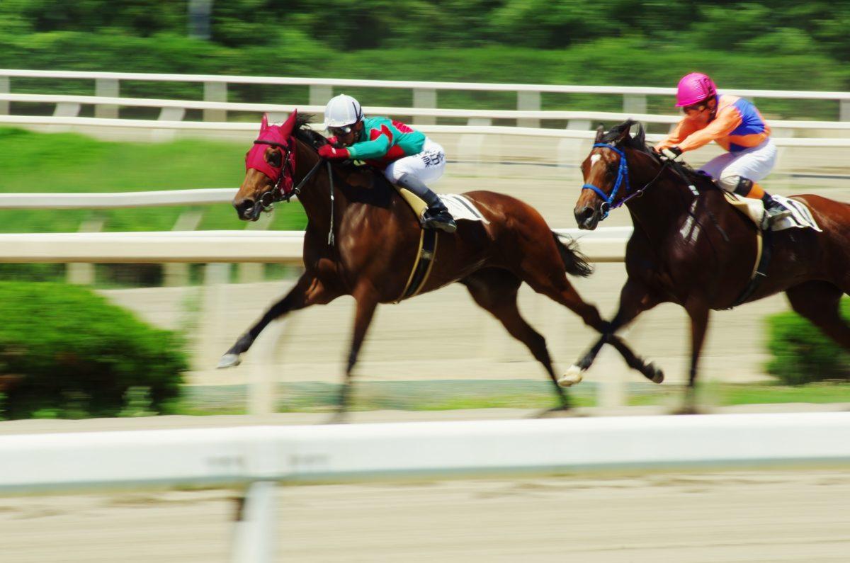 Scotia Saratoga Race Course