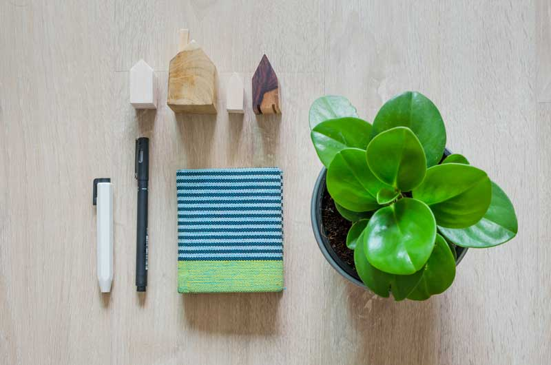 Organization Tools Your Home Must Have