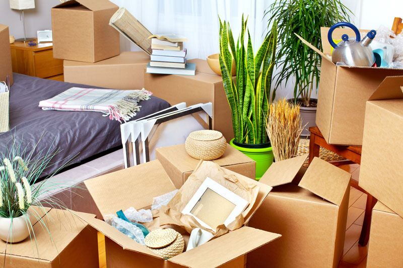 What Happens to Your Auto Insurance When You Move Out?